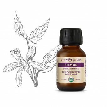 Neem Seed Oil - Organic Carrier Oil